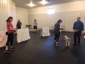 """Here is what one attendee had to say about the first reactive dog class:  """"Can't say enough good things about the reactive dog class. Our three-year-old pittie mix, Sadie, was adopted from unchained melodies and we've never made much progress with walks out doors and her pretty intense reactivity with dogs. We actually met our goal by the last night of the class and she was able to tolerate walking and u-turns with other dogs in sight, with a couple of joggers and trucks thrown in! I highly recommend this class and especially Heather [trainer]!"""""""